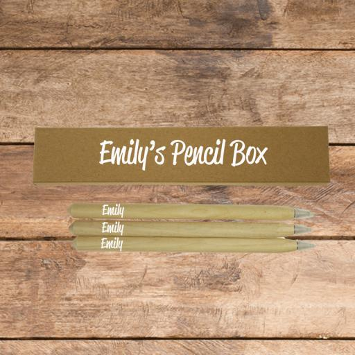 Pen Box and 3 Wooden Pens