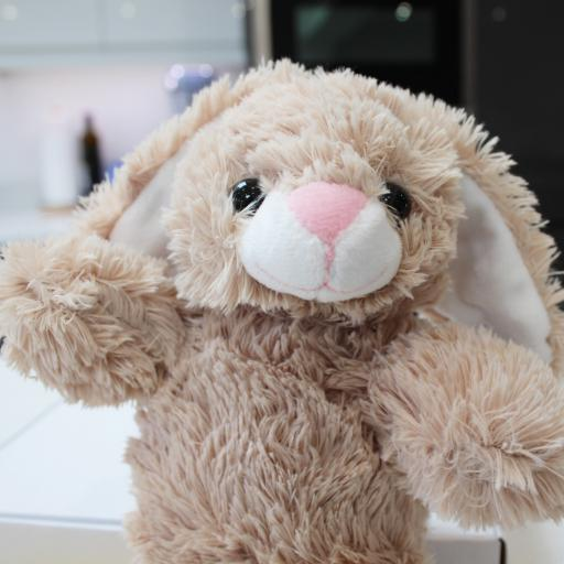 Bunny-Head.jpg